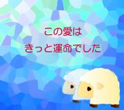hitsuji_BLUE-IS-THE-WARMEST.jpg