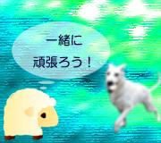 hitsuji_DOG-POLICE.jpg