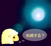 hitsuji_MOONRISE-KINGDOM.jpg