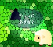 hitsuji_STARBUCK.jpg