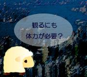 hitsuji_TRANSFORMERS_AGE-OF.jpg