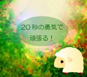hitsuji_WE-BOUGHT-A-ZOO.jpg