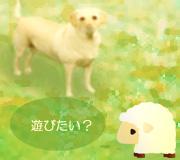 hitsuji_kinako.jpg